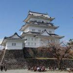 小田原城の夜桜2018見頃時期とライトアップの期間・時間は?屋台と混雑状況も